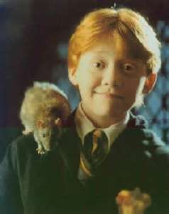Rupert Grint played Ron in the Harry Potter movies.