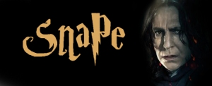 Snape topper