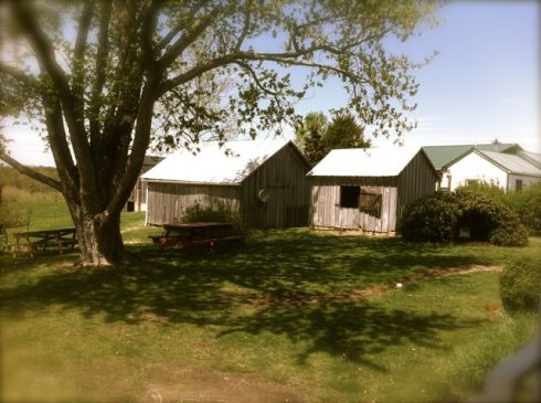 Outbuildings and barns to explore at the Mudd House