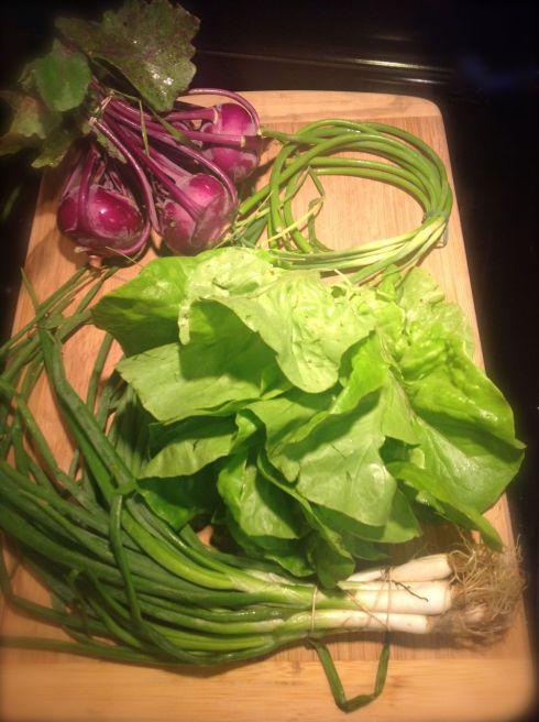 Kohlrabi, garlic tails, lettuce 1