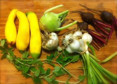 Yellow squash, Kohlrabi, Beets, Spring Onion, Sage, Garlic. (Not shown: Mint)