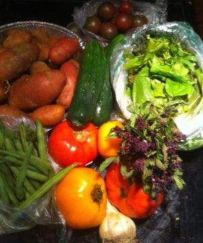 In this week's box from Calverts Gift CSA I found: Green beans, tomatoes, french  fingerling  potatoes, sweet peppers, spring mix cucumbers, cherry tomatoes, garlic