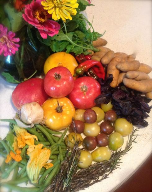 From our CSA box from Calvert's Gift.