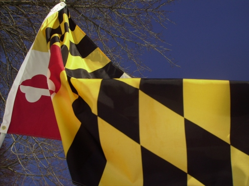 Maryland flag flying outside our house on a cold winter's day