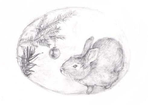 Jenny's bunny